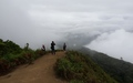 Doi Inthanon: Kew Mae Pan Trail