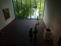 Louisiana Museum of Modern Art: Alberto Giacometti